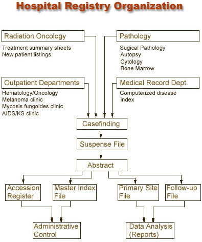 Flowchart of the organization of hospital registries